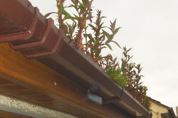 Domestic Gutter Cleaning Just Gutters Cleaning Belfast